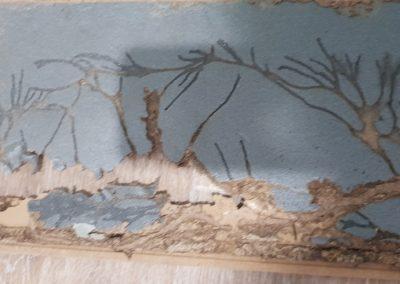 Termite Art 6